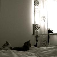 En obäddad säng